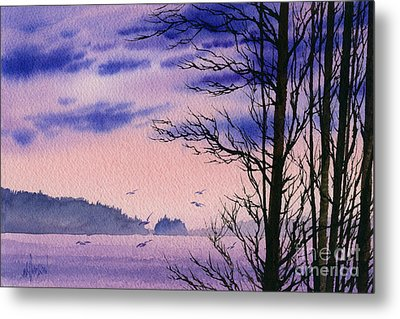 Metal Print featuring the painting Island Point by James Williamson