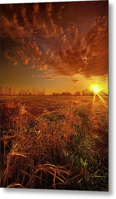 Metal Print featuring the photograph It Just Is by Phil Koch