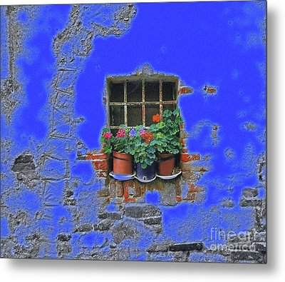 Italian Wallflowers Metal Print