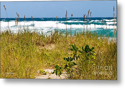 Its A Shore Bet Metal Print by Michelle Wiarda