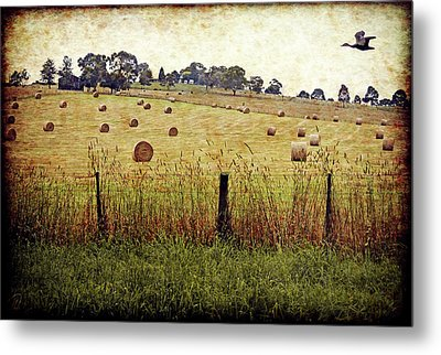 Metal Print featuring the digital art Its Baling Time by Margaret Hormann Bfa