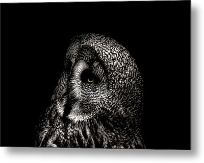 It's In The Eyes Metal Print by Martin Newman
