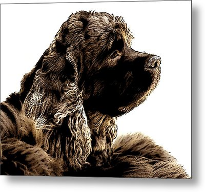 Jack Waits Metal Print by Norman  Andrus