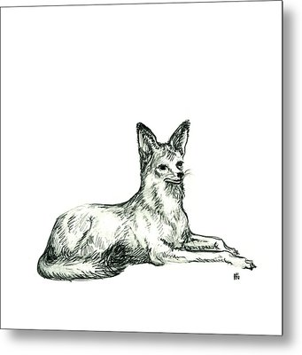 Jackal Sketch Metal Print