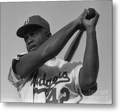 Jackie Robinson Swinging A Bat In Dodgers Uniform Metal Print by Celestial Images