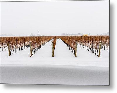 Jackson-triggs Winery Niagara Estates Metal Print by Rick Dunnuck