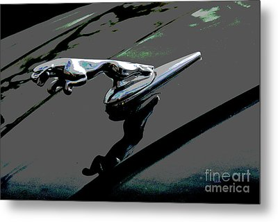 Jaguar Metal Print by Cindy Manero