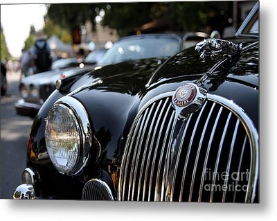 Jaguar Metal Print by Wingsdomain Art and Photography