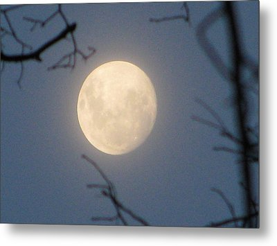 January Blue Moon Metal Print by Lindie Racz