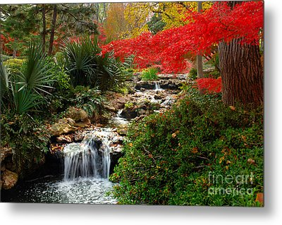 Japanese Garden Brook Metal Print by Jon Holiday