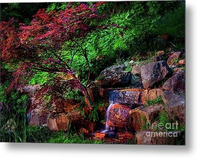 Japanese Maple At Honor Heights Park Metal Print by Tamyra Ayles