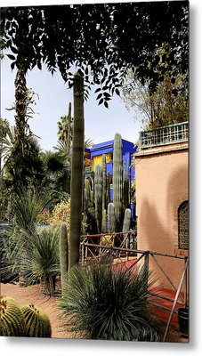 Metal Print featuring the photograph Jardin Majorelle 4 by Andrew Fare