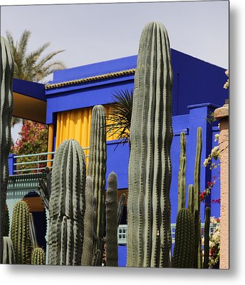 Metal Print featuring the photograph Jardin Majorelle 5 by Andrew Fare