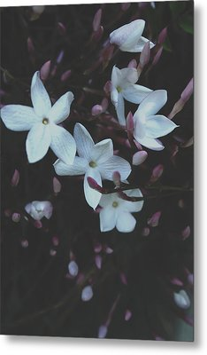 Metal Print featuring the mixed media Jasmine Dream- Photography By Linda Woods by Linda Woods