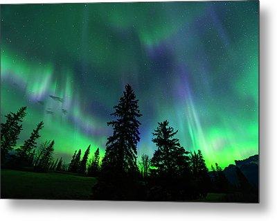 Metal Print featuring the photograph Jasper National Park Aurora by Dan Jurak