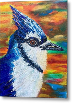 Jay Bird Alert Metal Print by David Singer