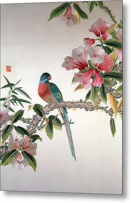 Jay On A Flowering Branch Metal Print