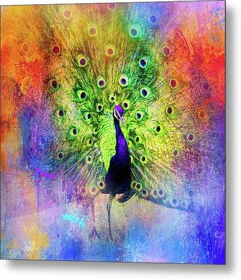 Jazzy Peacock Colorful Bird Art By Jai Johnson Metal Print