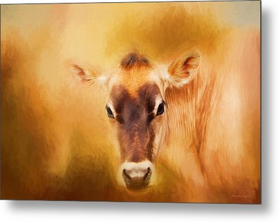 Jersey Cow Farm Art Metal Print by Michelle Wrighton