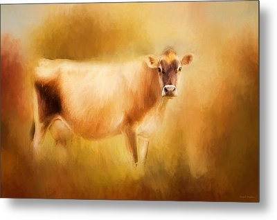 Jersey Cow  Metal Print by Michelle Wrighton