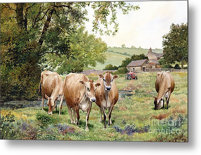 Jersey Cows Metal Print by Anthony Forster