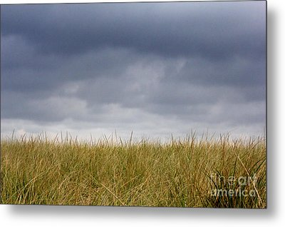 Metal Print featuring the photograph Remember When The Days Were Long by Dana DiPasquale
