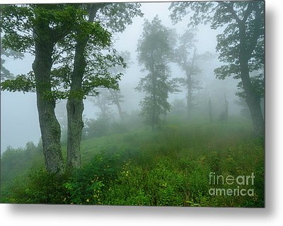 Metal Print featuring the photograph Jewell Hollow Overlook by Thomas R Fletcher
