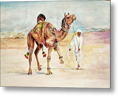 Jewellery And Trappings On Camel. Metal Print by Khalid Saeed