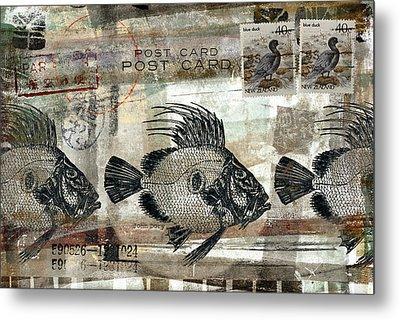 John Dory Fish Postcard Metal Print