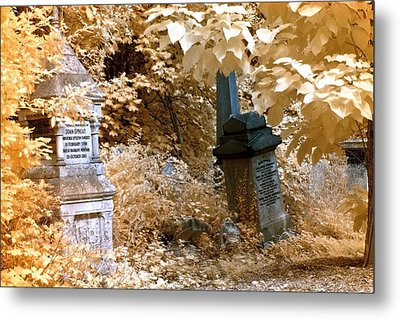 Autumnal Walk At Abney Park Cemetery Metal Print by Helga Novelli