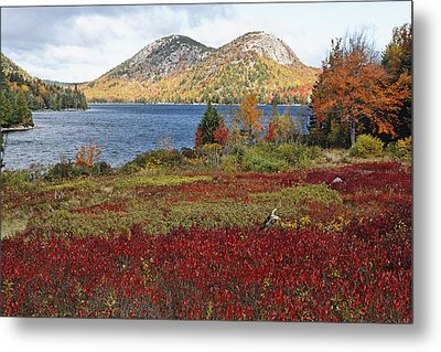 Jordan Pond And The Bubbles Metal Print by George Oze
