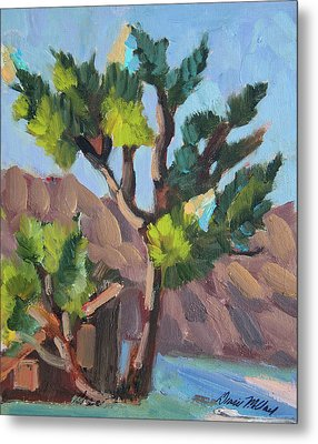 Metal Print featuring the painting Joshua At Keys Ranch by Diane McClary