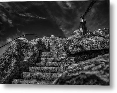 Journey To The Top Metal Print