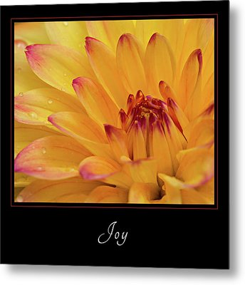 Metal Print featuring the photograph Joy 1 by Mary Jo Allen