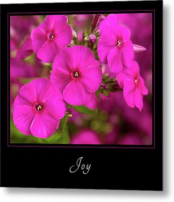 Metal Print featuring the photograph Joy 2 by Mary Jo Allen