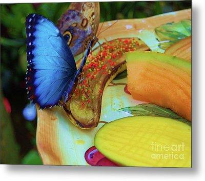Juicy Fruit Metal Print by Debbi Granruth