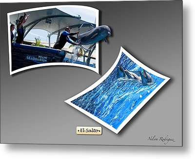 Jump Metal Print by Nelson Rodriguez