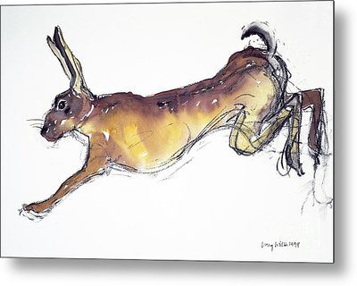 Jumping Hare Metal Print by Lucy Willis