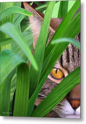 Jungle Cat Metal Print by Bob Nolin