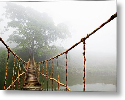 Jungle Journey Metal Print by Skip Nall