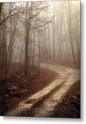 Jungle Journey - The Road Sepia Metal Print