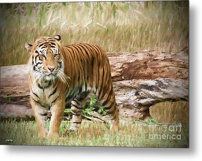 Jungle Queen Edition 2 Metal Print by Judy Kay