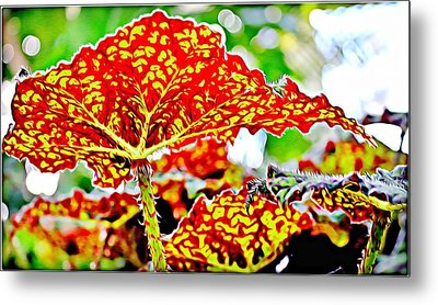 Metal Print featuring the photograph Jungle Leaf by Mindy Newman