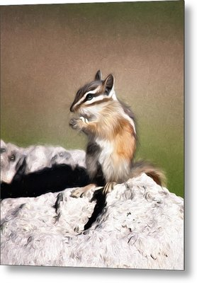 Metal Print featuring the photograph Just A Little Nibble by Lana Trussell