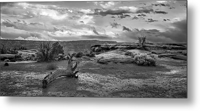 Just After The Rain IIi Metal Print by Jon Glaser