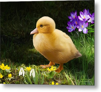 Just Ducky Metal Print