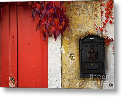 Metal Print featuring the photograph Just Red by Yuri Santin