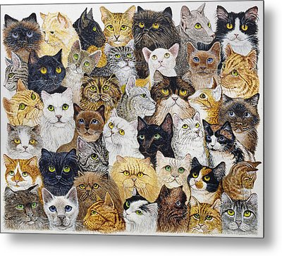 Just The Cat's Whisker Metal Print by Pat Scott