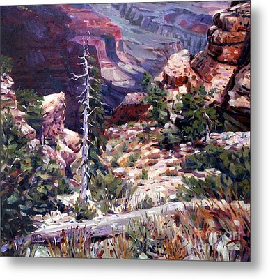 Kaibab Trail Metal Print by Donald Maier