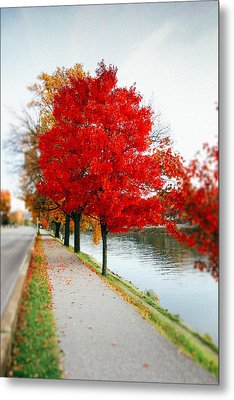Kanawha Boulevard In Autumn Metal Print